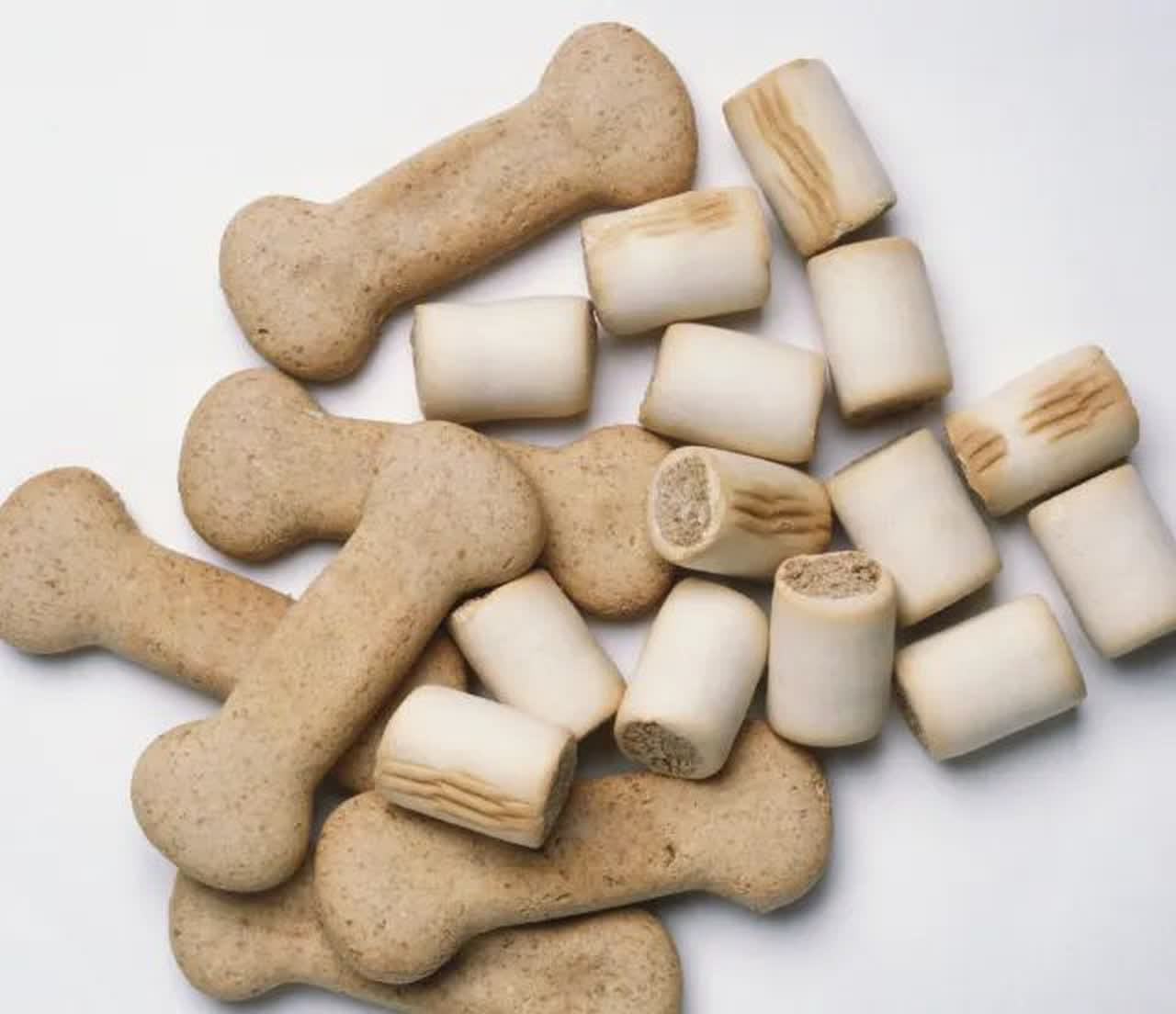 Square and bone-shaped dog biscuits
