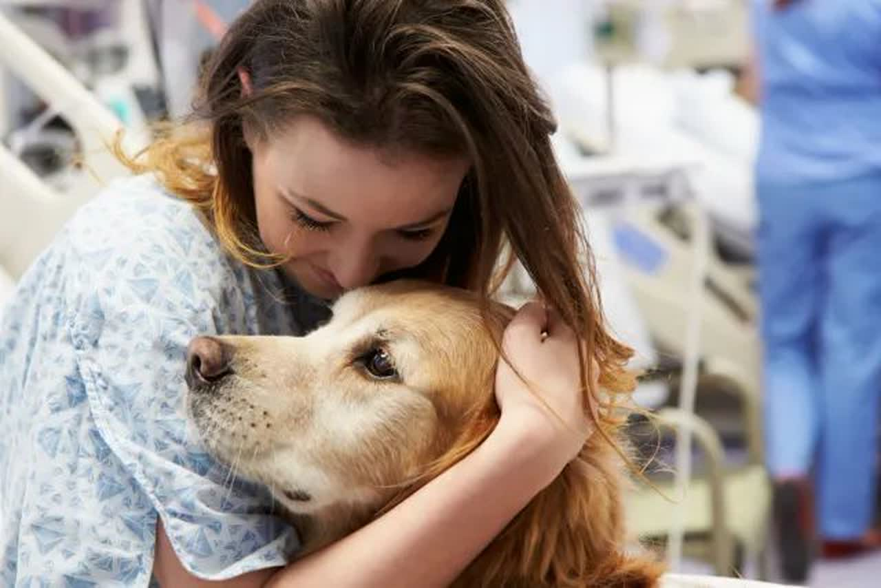 Female patient hugging a therapy dog in a hospital