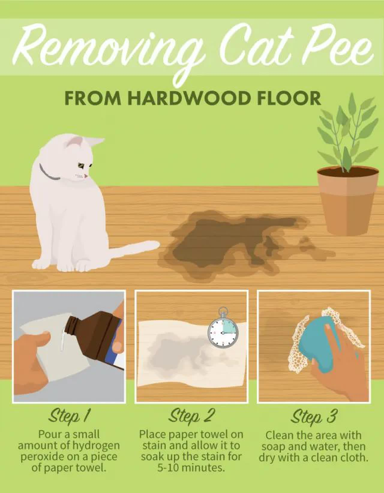 getting cat urine out of hardwood floors