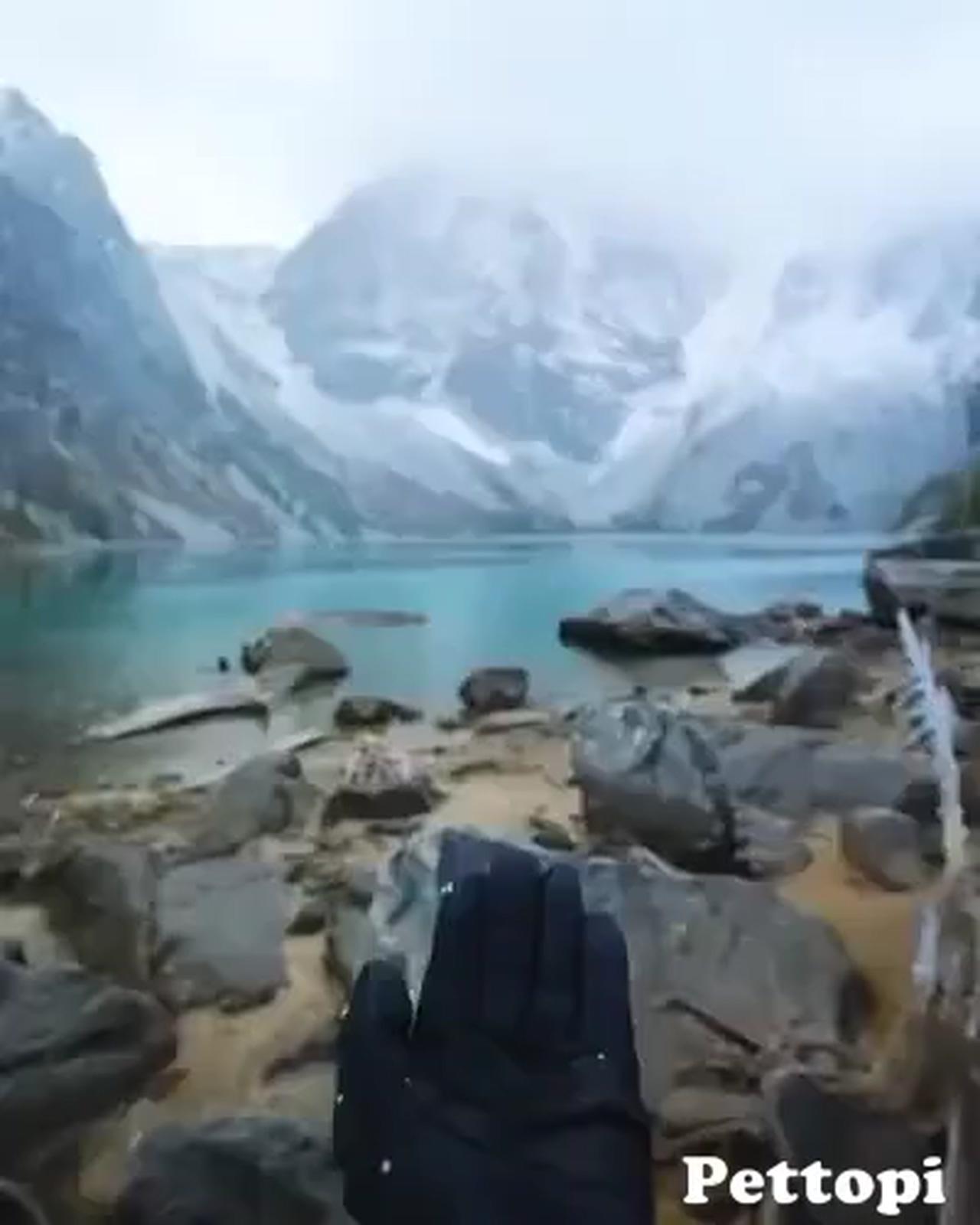 Cute bird perched in hand - Beautiful Nature