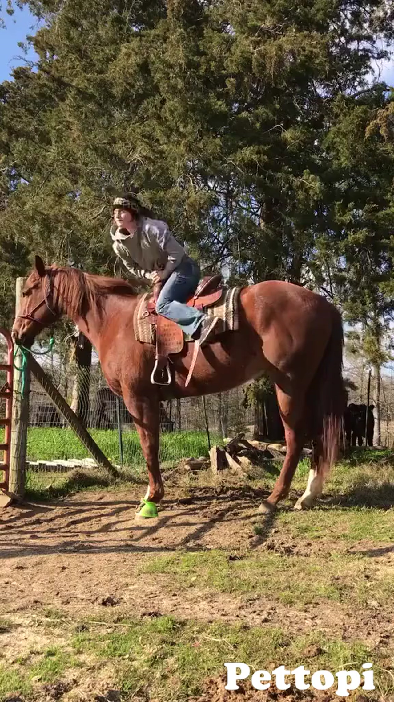 How to run up your stirrups